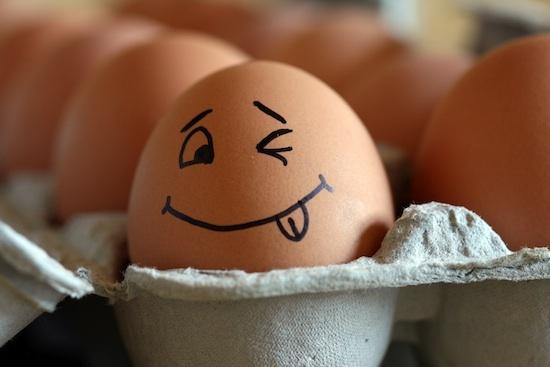 Il ne faut pas se brouiller avec les œufs !