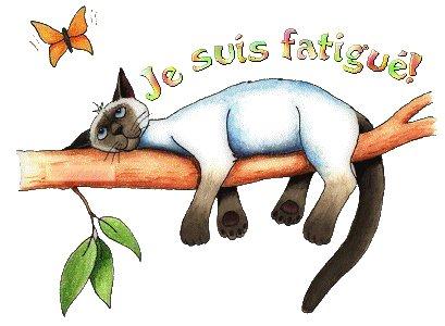 Attention : Fermeture pour Congés Annuels !!!!